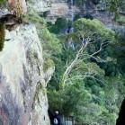 森や滝を巡りながら