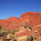 ドーム状の岩山