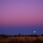 ムラサキ色の空と月