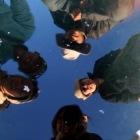 塩湖の穴に映る仲間たち