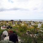 きれいな島の墓地