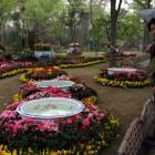 蘇州の拙政園