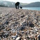 エトルタの海岸は可愛くて小さい石がいっぱい。