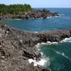 大浦海岸柱状節埋帯