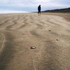 90マイルビーチを散歩