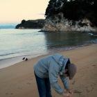 貝殻を撮ったり