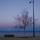 6月26日 夕方のカイテリテリの海岸