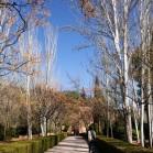 次はヘネラリフェ庭園へ