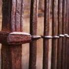 大聖堂の柵
