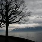 レマン湖にて