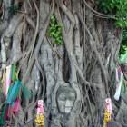仏像の頭部