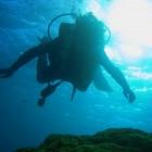 次に潜る時にはしっかりきれいなお魚を撮るぞと決心